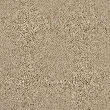Masland Smokey Quartz 9457825