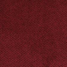 Masland Montauk Crimson 9479185