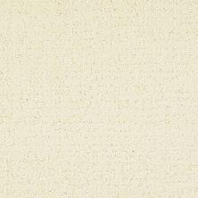 Masland Matisse Ivory Marquisette 9493310
