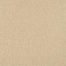 Masland Matisse Carmelize 9493520