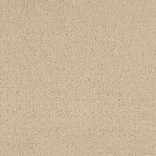 Masland Matisse River Rock 9493535
