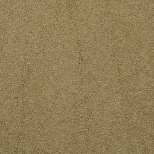 Masland Embrace Bronze Tone 9501341