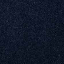 Masland Embrace Arapawa 9501662