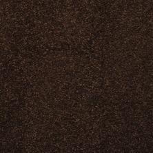 Masland Embrace Cola 9501718