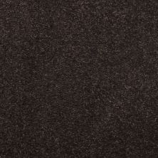 Masland Embrace Black Olive 9501735