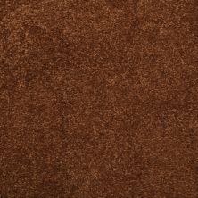 Masland Embrace Bracken 9501916