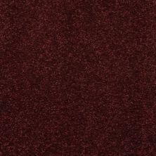 Masland Embrace Aubergine 9501969