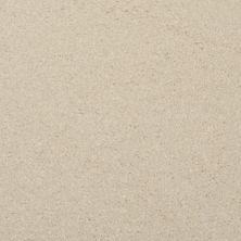 Masland Softly Stated Sunroom 9502110