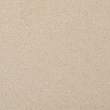Masland Softly Stated Astra 9502117