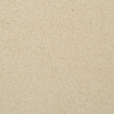 Masland Softly Stated Warm Day 9502126
