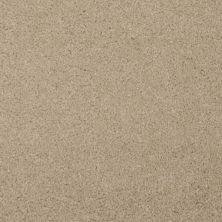 Masland Softly Stated Sandy Taupe 9502208