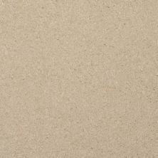 Masland Softly Stated Top Shelf 9502225