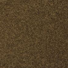 Masland Softly Stated Thatch 9502520