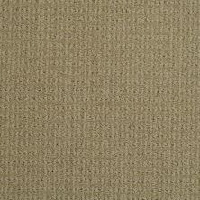 Masland Sisaltex Dust Storm 9508516
