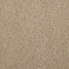 Masland Granique Sand Stone 9514124