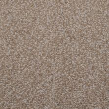 Masland Granique Travertine 9514227