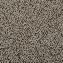 Masland Granique Limestone 9514548