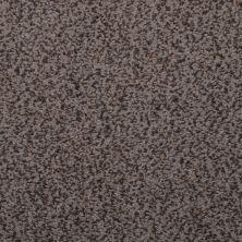 Masland Granique Titanium 9514828