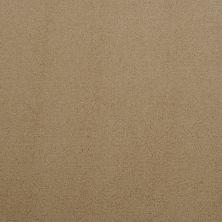 Masland Silk Touch Surrey 9515231