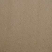Masland Silk Touch Bistro 9515246