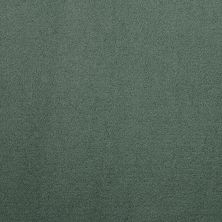Masland Silk Touch Verdant 9515517