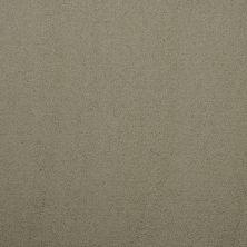 Masland Silk Touch Glade 9515541