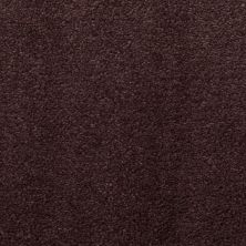 Masland Silk Touch Red Earth 9515951