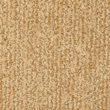 Masland Mesa Verde Sienna 9519303