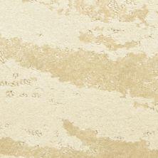 Masland Lynx Felidae 9566122