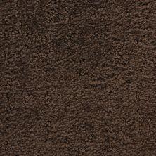 Masland Santa Barbara Samarkand 9590888