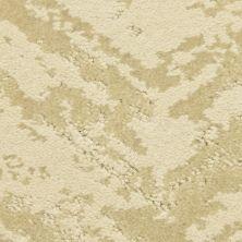 Masland Cheval Felidae 9596122