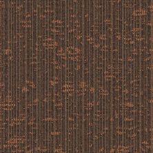Masland Dynamic Scholastic 9603101