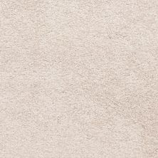 Masland Knockout Frosted Taupe 9615230