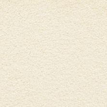 Masland Ravishing Dazzling 9625006