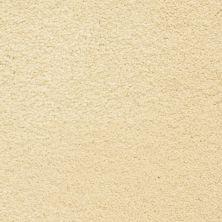 Masland Ravishing Stunning 9625107