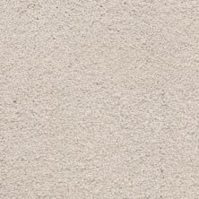 Masland Ravishing Beguiling 9625531