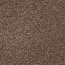 Masland Ravishing Elegant 9625725
