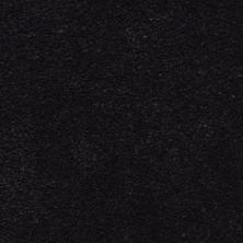 Masland Ravishing Enthralling 9625730