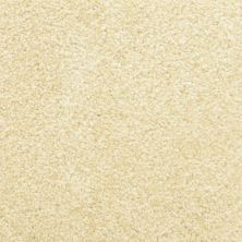 Masland Delray Seashell 9628111