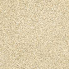 Masland Delray Dune 9628123