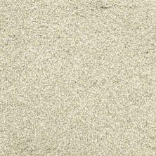 Masland Delray Seagull 9628528