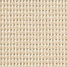 Masland Bandala Jazzed Seagrass 9648206