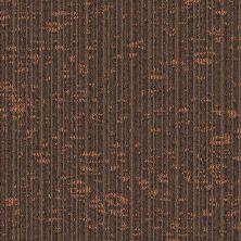Masland Dynamic-tile Scholastic T9603101