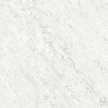 Ceratec Marmi Classici Bianco Carrara MRMCLRR2323