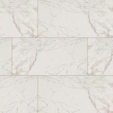 MSI Tile Pietra Stone Carrara NCAR2X2-N