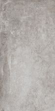 Paramount Tile Antwerp GREY EG300X600ATW03