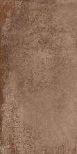 Paramount Tile Spectra BROWN EG300X600SCT06PAR