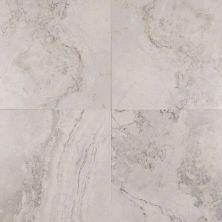 MSI Tile Napa Stone Gray NNAPGRA1212
