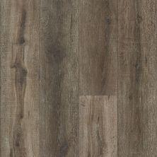 Paramount Flooring Rigid Core XL LVT 9. FALLEN TREE RGDCLLNTR