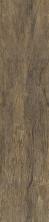 Flordia Tile Cellar Meld FTI343278X36